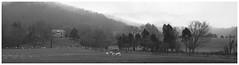 Between Shawsville and Elliston (daveelmore) Tags: bw panorama mist mountains fog farmhouse rural landscape virginia blackwhite cattle farm hills va stitchedpanorama lumixleicadgsummilux25mm114