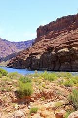 Colorado River (oxfordblues84) Tags: arizona sky water river nationalpark grandcanyon canyon coloradoriver grandcanyonnationalpark roadscholar roadscholartour roadscholartrip grandcanyonnationalparkexploringthenorthandsouthrims roadscholarorg