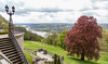 Castello di Drakenfeld (Viroproject) Tags: germany reno rhein drachenfels konigswinter renania