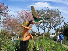 hummingbird (Bolt of Blue) Tags: hummingbird lego palosverdes southcoastbotanicgarden seankenney natureconnects