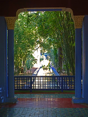 Jardin Majorelle (Andy Latt) Tags: blue gardens sony jardin morocco maroc marrakech majorelle marrakesh yvessaintlaurent majorellegardens jardinmajorelle andylatt dsc007181 rx100m3