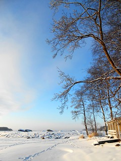 Blue, blue sky, white snow and freezing cold weather / Joensuu, Finland