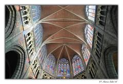 Interior Catedral Gante ( Marco Antonio Soler ) Tags: de nikon europa belgium belgique interior catedral eu iso 16 jpg belgica gent hdr gante 2016 d80 eueope