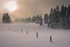 When the fog comes rolling in (helena678) Tags: trees winter light sun mist snow fog landscape schweiz switzerland cabin soft tracks posts rollingin