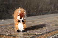 Punxsutawney Phil sees his shadow - Six  more weeks of winter (Sockenhummel) Tags: winter shadow berlin weather spring squirrel fuji phil finepix fujifilm schatten wetter x30 frhling eichhrnchen groundhogday punxsutawney gedchtniskirche mosaik murmeltier punxsutawneyphil murmeltiertag fujix30 undtglichgrsstdasmurmeltier