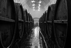 Into the cellar (n3) (Guillaume DELEBARRE (Guigui-Lille)) Tags: blackandwhite bw canon lights dof darkness noiretblanc barrels brewery czechrepublic cave cz fullframe plzen bohemia reflets cellar f28 rpubliquetchque pilsnerurquell tonneaux beerbarrels bohme tamron2470f28