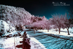 (IR)  Wu Ling Farm, Taiwan ( (Morris)) Tags: blue red sky white mountain tree green water landscape ir nikon ngc taiwan galaxy  milkyway          d7100
