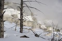 Yellowstone (wietsej) Tags: winter mist snow nature fog zeiss landscape sony yellowstone geyser 1670 a6000 sel1670z