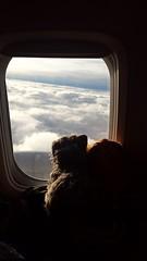 Me and Wicket saying Portugal Goodbye (rocknrolltheke) Tags: sky portugal clouds aviation flight himmel wolken porto smokey oporto wicket flug rckflug 31365 smokeystravelcorner