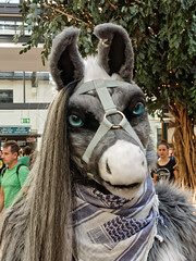 Eurofurence 2015 (Deeragon Entertainment) Tags: horse furry piston stallion fursuit 2015 eurofurence fursuiter fursuiting ef21
