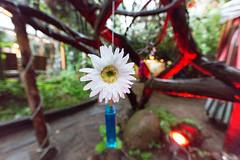 Hochzeit Haus der Ideen (Hochzeitsfotograf Berlin | H2N WEDDING) Tags: grit hochzeitsfotografie hochzeitsfotograf h2n hochzeitsfotografieberlin erlebach hochzeitsfotografberlin hochzeitsfotosberlin