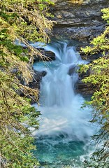 Johnstons Canyon (Barbie Photography) Tags: nature beauty landscape hiking alberta passion banff gorge serene canadianrockies watefalls barbiesphotography