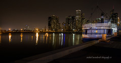 Chicago Skyline (Michael Bartoshevich) Tags: city urban lake chicago building skyline architecture night lights evening pier boat illinois dock nightlights streetlights navy scenic structures scene lakemichigan navypier waterscape streeter willistower