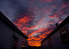 Sunset (hmxhm) Tags: sunset newzealand clouds olympus wellington aotearoa