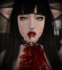 Bad Kitty? (NovaMoonshine) Tags: life girl nova cat blood kitten mess play bad kitty sl secondlife second bloody