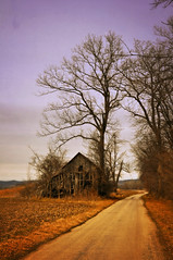 Winter on a Country Lane (ozark-paddler) Tags: tree barn rural farm missouri