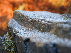 Frost on Stone (uk_dreamer) Tags: ice up moss frost close bokeh dew bokehwhores