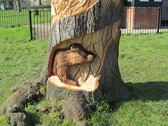Art in the Park 3/5 (pefkosmad) Tags: park wood city uk england urban tree art public animals cherry artist wildlife carving gloucestershire gloucester stump british carver playarea andyoneill