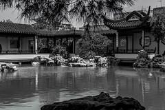 Chinese Garden of Serenity (Juan R. Ruiz) Tags: canon garden island islands europa europe malta chinesegarden isla islas jardn santalucia canon60d jardnchino canoneos60d santaluija chinesegardenofserenity