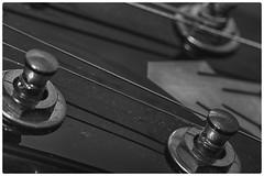 R&R (Antonio Sabin) Tags: bw macro rock cuerda guitar rockroll gibson