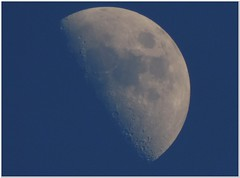 April Moon just half ... (MaxUndFriedel) Tags: sky moon dawn spring darkness clear april lunar