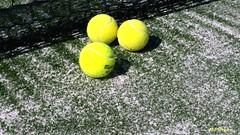 tennis court (marco prete) Tags: verde green net sport yellow sand balls vert amarillo tennis giallo pelotas pista palle tenniscourt sabbia rete campodatennis