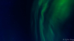 Northern lights (Fjola Dogg) Tags: naturaleza nature canon stars island iceland islandia spring europe natureza natur pad natuur natura nightsky sland nttra northernlights auroraborealis islande izland selfoss islanda 2016 evropa islndia naturen ijsland auroreborale naturae norurljs naturalesa auroraboreale islanti islando rborg md evrpa izlanda rnesssla nttra fjoladogg sland fjladgg islann norurljs rnesssla fjladgg evrpa canonpowershotg7x canong7x padfjoladogg mdfjoladogg rborg