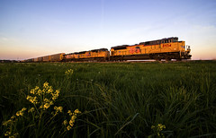 Elephant Style Consist (Jackson Vandeventer) Tags: railroad up yard rural train photography evening illinois track power nathan outdoor dusk tracks rail railway trains il rails unionpacific locomotive ge railfan freight railroads unit generalelectric manifest emd railfanning sd70m sd70ace villagrove ac4400cw mixedfreight k5lla mpipbj sd70ah panasubdivision stlouisserviceunit mpipb