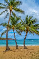 Three Amigos (madzack385) Tags: blue vacation beach clouds hawaii nikon oahu hanaumabay