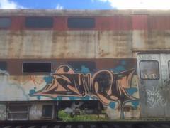 june (always_exploring) Tags: railroad history car june portland graffiti golden pacific passenger