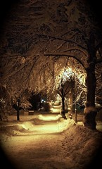 Winter wonderland (kristanurmi) Tags: city winter light white snow cold tree night alley mysterious