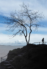 G At The Edge of the World (Explored, 18-April-2016) (bjg_snaps) Tags: ocean cliff nature silhouette landscape walk daughter pr steppingstones lonetree guiderail babbacombe proudmama oddicombe gainingindependence
