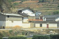 WKK_7041 (kongkham35@hotmail.com) Tags: china kunming nikon1685 nikond7000 yunan