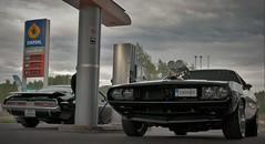 Challengers (Jonas.W.) Tags: auto cars car 1971 motors dodge 1970 mopar challenger statoil samsungnx300