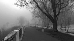 vanishing (Sergey S Ponomarev - very busy) Tags: park city morning bw mist snow tree primavera nature fog canon fence garden landscape spring haze oak europe mood path walk north perspective foggy atmosphere natura bn neve april gloom lamps f80 aprile paysage vanishing stroll ambience paesaggio nord citta  kirov 2016 hff              vyatka         sergeyponomarev ef24105f40l viatka   wjatka