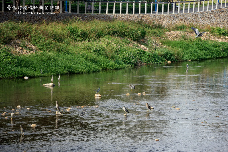桃園龜山.第一河濱公園