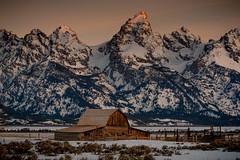 Moulton Barn (Jeff Bernhard) Tags: barn sunrise moose mormon wyoming tetons jacksonhole wy moulton grandtetonnationalpark gtnp