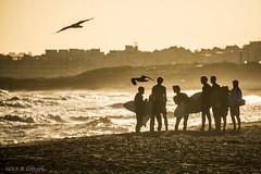 Tablas afuera (Gonzak) Tags: summer sol uruguay atardecer nikon surf gente surfer playa chicas gaviotas tablas gettyimages maldonado uz puntadeleste muchachos 2015 guz eev gonzak estalloelverano gonzakfotos