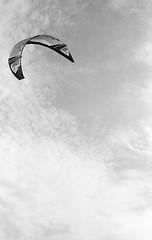 Kite (Federico Pitto) Tags: bw d76 genova hp5 nikonfe2 nikkor50mm18