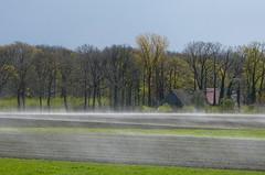 After a wintry shower (joeke pieters) Tags: holland netherlands rural landscape nederland pastoral paysage landschaft damp achterhoek winterswijk landschap gelderland landelijk woold panasonicdmcfz150 1270143