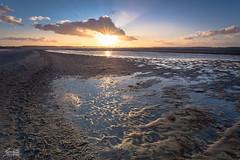 Laboe Beach (Luziferian) Tags: light sea sky seascape reflection beach water backlight clouds strand landscape meer cast rays beams kiel foreground schleswigholstein laboe frde derechtenorden kielfjrd