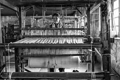 A Pashmina Loom in Leh, Ladakh (Anoop Negi) Tags: india white black monochrome photo goat pashmina leh weaving anoop bnw loom ladakh negi handloom photogrpahy ezee123