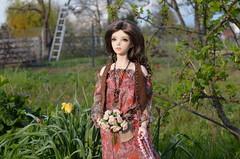 Happy Birthday - Eliza (2) (JL_the_Lion) Tags: birthday summer sun flower bag doll dress outdoor sid 7 sd gift lee bjd eliza 13 cherie kojiro my iplehouse happybirthdayeliza