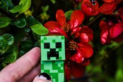 ... (azyef94) Tags: flower toys photography rainyday toyphotography mojang minecraft