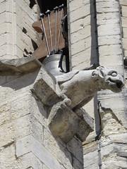 20150405 Vaucluse Avignon - Gargouilles (5) (anhndee) Tags: france church frankreich paca gargoyle avignon glise eglise gargouille vaucluse gargouilles provencealpescotedazur