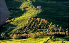 light and shadow (Luigi Alesi) Tags: light shadow italy verde green nature landscape countryside nikon scenery san italia raw country ombra natura severino campagna tamron luce marche paesaggio macerata 70300 d7100