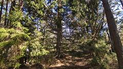 IMG_1382 (Holtsun napsut) Tags: park sea suomi finland landscape island outdoor east tokina national meri itmeri kansallispuisto saari 1116mm r patikointi eos550d