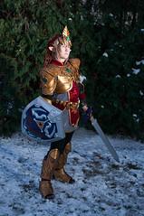 _DSC8815.jpg (Chase Wirth) Tags: cosplay link zelda daishocon daishocon2015
