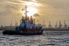 Hafenromantik (JayPiDee) Tags: sunset backlight port germany deutschland harbor boat ship sonnenuntergang hamburg tugboat backlit hafen schiff atmospheric elbe stimmungsvoll gegenlicht schlepper