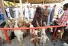 Nizwa, Oman. (chimck) Tags: asia middleeast arabia oman 阿曼